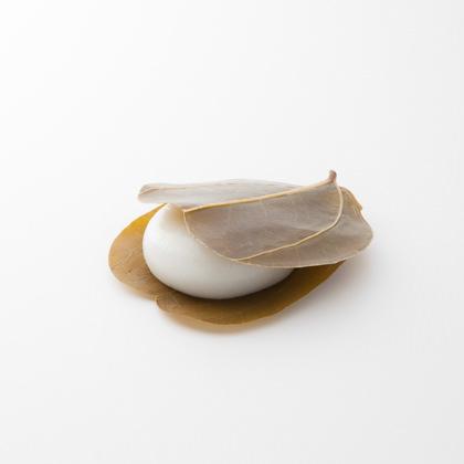がめの葉饅頭